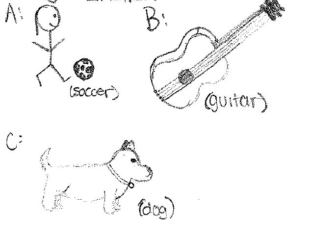 CWB soccer guitar dog
